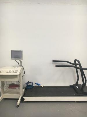 Cambridge Heart CH 2000 Exercise System with FullVision Model TMX425